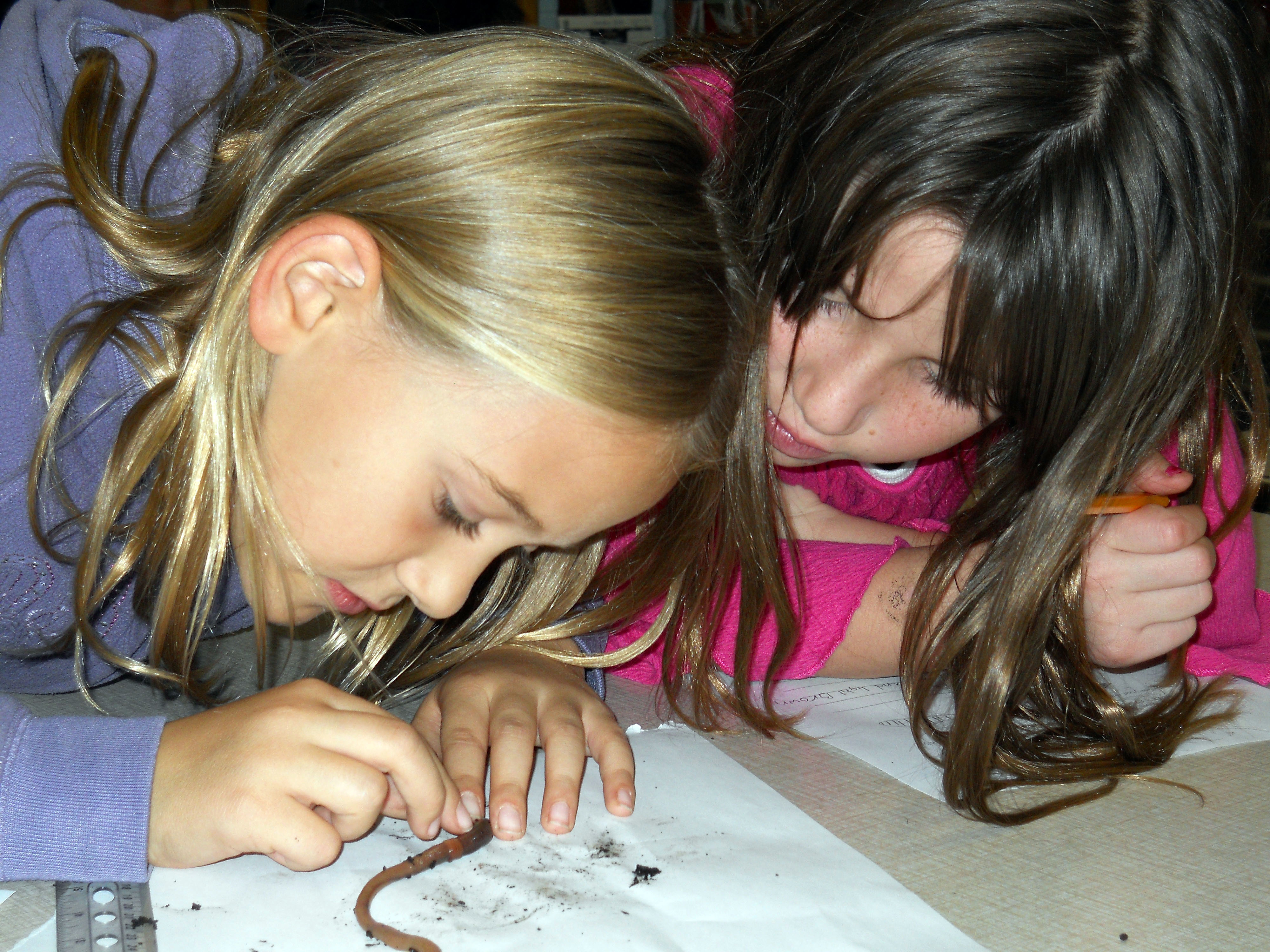 Girls Dissecting Worms